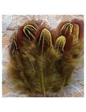 20 шт. Желтый цвет. Фазан цветное перо 4-7 см