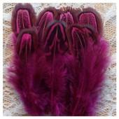 20 шт. Фуксия цвет. Фазан цветное перо 4-7 см