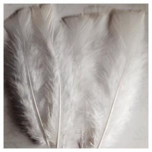 20 шт. Белый цвет. Перо Индейки 9-15 см
