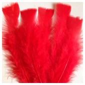 20 шт. Красный цвет. Перо Индейки 9-15 см