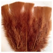 20 шт. Шоколад цвет. Перо Индейки 9-15 см