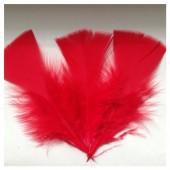 20 шт. Красный цвет. Перо Индейки 5-8 см