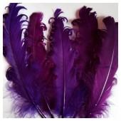 20 шт. Фиолетовый цвет. Гусиное перо 12-16 см. Кудри