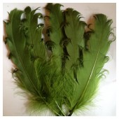 20 шт. Темно-зеленый цвет. Гусиное перо 12-16 см. Кудри
