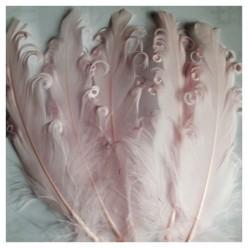 20 шт. Розовый цвет. Гусиное перо 12-16 см. Кудри