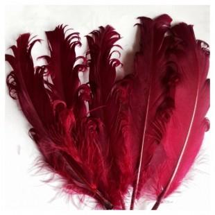 20 шт. Бордо цвет. Гусиное перо 12-16 см. Кудри
