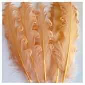 20 шт. Бежевый цвет. Гусиное перо 12-16 см. Кудри