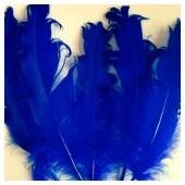 20 шт. Синий цвет. Гусиное перо 12-16 см. Кудри