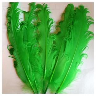 20 шт. Зеленый цвет. Гусиное перо 12-16 см. Кудри