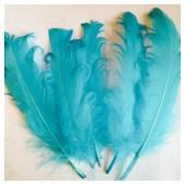 20 шт. Голубой цвет. Гусиное перо 12-16 см. Кудри