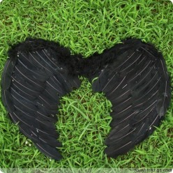1 шт. Черный цвет. Крылья ангела. 80х55 см.