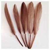 20 шт. Какао цвет. Перо Петуха 8-14 см