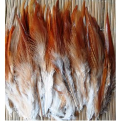 20 шт. Рыжий цвет. Перья петуха. Цветное 10-15 см