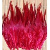 20 шт. Бордо цвет. Перья петуха. Цветное 10-15 см
