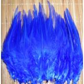 20 шт. Синий цвет. Перья петуха. Цветное 10-15 см