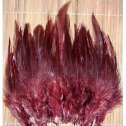 20 шт. Коричневый цвет. Перья петуха. Цветное 10-15 см