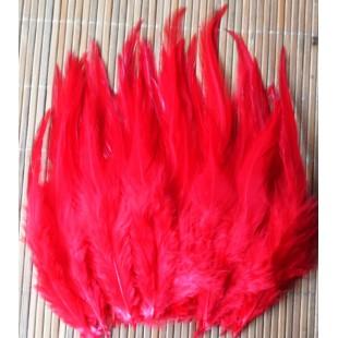 20 шт. Красный цвет. Перо петуха. Цветное 12-16 см.