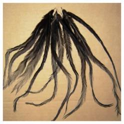 10 шт. Черный цвет. Перо американского петуха 10-15 см. Цветное