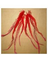 20 шт. Красный цвет. Перья американского петуха 10-15 см.