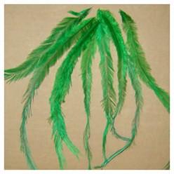10 шт. Зеленый цвет. Перо американского петуха 10-15 см. Цветное