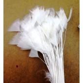 20 шт. Белый цвет. Цыпленок.  Кисточка 10-15 см