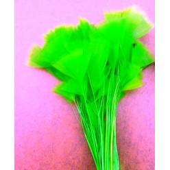 20 шт. Зеленый цвет. Цыпленок.  Кисточка 10-15 см