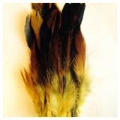 20 шт. Желтый цвет. Перо петуха 2-х цветное 12-18 см