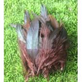 20 шт. Шоколад цвет. Перо петуха 2-х цветное 12-18 см