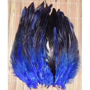 20 шт. Синий цвет. Перо петуха 2-х цветное 12-18 см