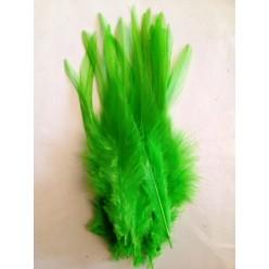 20 шт. Зеленый цвет. Перья петуха. Цветное 12-16 см