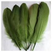 20 шт. Темно-зелень цвет. Перо петуха 15-20 см.