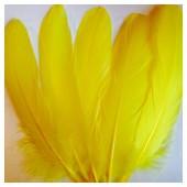 20 шт. Желтый цвет. Перо Петуха 15-20 см