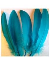 20 шт. Голубой цвет. Перо Петуха 15-20 см