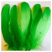 20 шт. Зеленый цвет. Перо Петуха 15-20 см