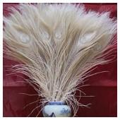 1 шт. Молочно-белый цвет. Перья павлина 25-30 см