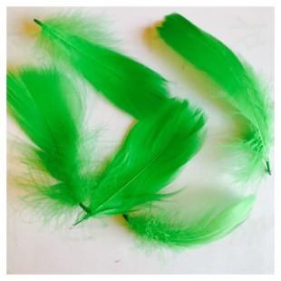 20 шт. Зеленый цвет. Гусиное перо 4-6 см. Плавающее