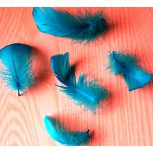 20 шт. Голубой цвет. Гусиное перо 4-6 см. Плавающее