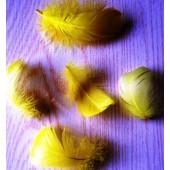 20 шт. Желтый цвет. Гусиное перо 4-6 см. Плавающее