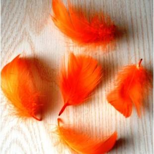 20 шт. Оранжевый цвет.  Гусиное перо 4-6 см. Плавающее
