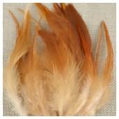 20 шт. Светло-рыжий цвет. Перья петуха 5-10 см. Цветные перья