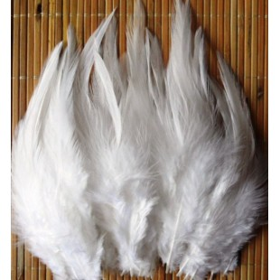 20 шт. Белый цвет. Перья петуха 5-10 см. Цветные перья