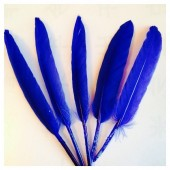20 шт. Синий цвет. Перо петуха 8-14 см