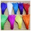 Перья петуха 20-30 см. Цветное