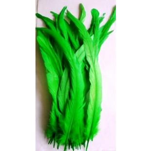 1 шт. Нефрит цвет. Перья петуха 20-30 см. Цветное
