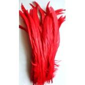 1 шт. Красный цвет. Перья петуха. 30-35 см. Цветное