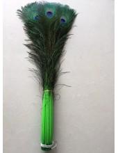 1 шт. Зеленый цвет. Перо Павлин 90-100 см