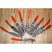 566. 1 шт. Перья редких птиц 5-10 см