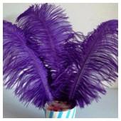 1 шт.Фиолетовый цвет. Перья страуса 25-30 см