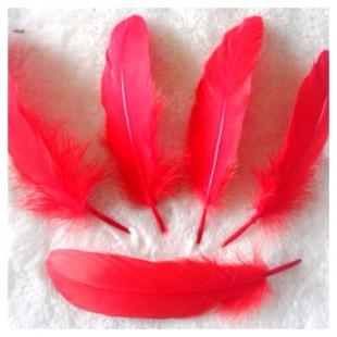 20 шт. Красный цвет. Перо Петуха 10-15 см