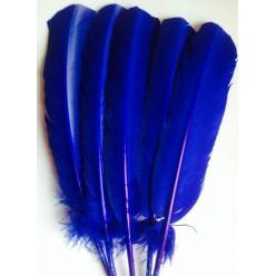1 шт. Синий цвет. Гусиное перо 25-30 см
